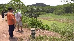 ชาวบ้าน อ.ท่าแซะ เจอภัยแล้ง คลองป่าต้นน้ำแห้ง ทุเรียนยืนต้นตาย วอนรัฐช่วย