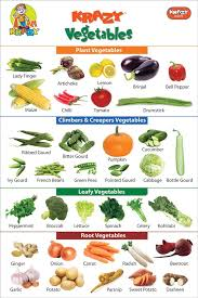 Krazy Vegetables Chart Manufacturer Exporters From India