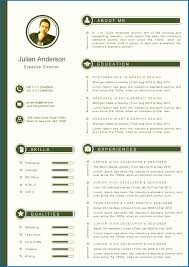 Layout Of A Resume Resume Template Layout Emberskyme 17