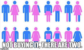 Different Genders Chart Image Tagged In Gender Chart 58 Genders Imgflip