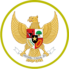 Indonesia national under-19 football team