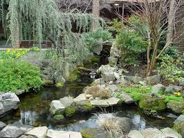 Small Picture 16 best Water Gardens images on Pinterest Backyard ponds