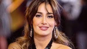 انفصال حلا شيحة.. اتفقت على اقتسام أولادها بعد واقعة معز مسعود