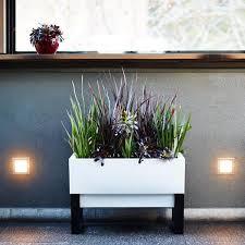 Image Herbs Planter Box Modern Indoor Planter Glowpear Urban Garden Planter Box Modern Planters For Stylish Garden