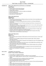 Sample Director Of Operations Resume Director Operations Resume Samples Velvet Jobs 4