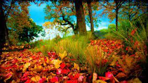 Free download zedge wallpapers HD ...