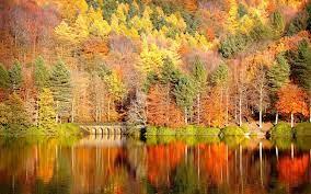 autumn | Desktop wallpaper fall, Free ...