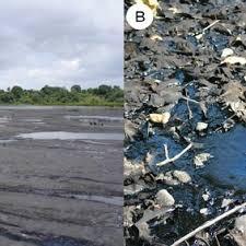 Liquid Asphalt Titan A Site 31 Liquid Asphalt Of Pitch Lake Trinidad And