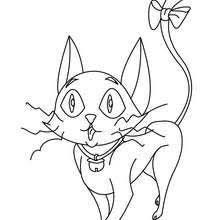 Small Picture Black cat under witch spell coloring pages Hellokidscom