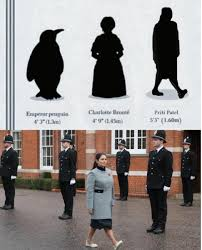 Uk government minister priti patel resigned wednesday amid a political storm over her undisclosed meetings with israeli officials. Handy Diagram To Help Gauge The Relative Height Of Uk Home Secretary Priti Patel Memes