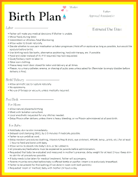Editable Birth Plan Template Example Of Birth Plan Template Free Editable Gentle C Section
