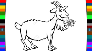Small Picture Animal Coloring Pages How to Draw a Goat Learn Animals for