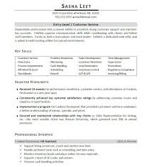 Entry Level Resume Summary Examples Resume Summary Examples Entry