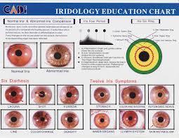 What Is Iridology Chart Healing Ways Iridology Charts Iridology Chart Health