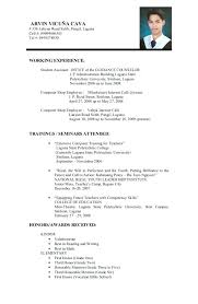 Sample Application Resumes Meloyogawithjoco Stunning Resume Sample Format For Job Application