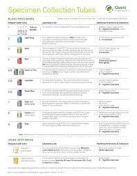 Quest Lab Test Tube Color Chart Www Bedowntowndaytona Com