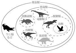 鳥の色恐竜の色なぜ恐竜の色を現代の鳥類の発色から検討できるのか