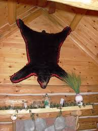 bear rug taxidermy decor