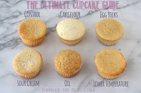 The Ultimate Cupcake Guide Handle The Heat