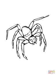 Small Picture Black Widow coloring page Free Printable Coloring Pages