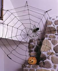 Rope Spider Web