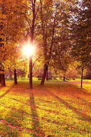 fall nature backgrounds. Contemporary Backgrounds Inside Fall Nature Backgrounds A