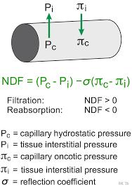 fluid pressure equation. capillary filtration net driving force fluid pressure equation