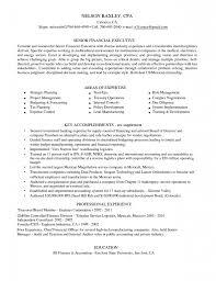 skill set resume resume templates
