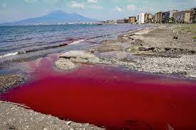 Vernice rossa in mare a Castellammare di Stabia - Foto