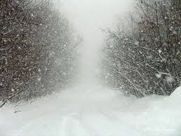 Image result for snow storm