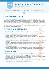 Professional Resume Services By Professional Resume Writers