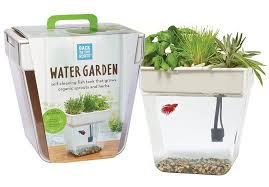 Self Cleaning Fish Tank Garden Amazoncom Back To The Roots Water Garden Fish Tank Premium