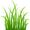 """Résultat de recherche d'images pour """"grass"""""""
