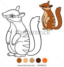 Small Picture Color Picture Stock Images Royalty Free Images Vectors