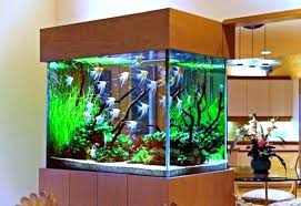 aquarium furniture design. Aquarium Table Stand Modern Design Ideas Medium Size Small Cool Furniture With Warm Lamp And