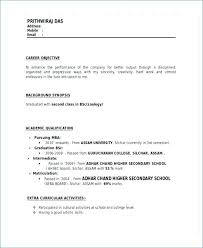 Resume Format For Mba Fresher Resume Format Doc Free Doc Financial