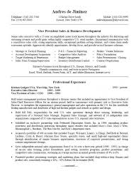 Vp Of Sales Resume Examples Examples Of Resumes