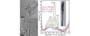 mgo nanobelt modified graphene tantalum wire electrode for the image for unlabelled figure