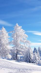 winter background iphone 6. Beautiful Iphone Snow Scene IPhone 66 Plus Wallpaper Throughout Winter Background Iphone 6 A