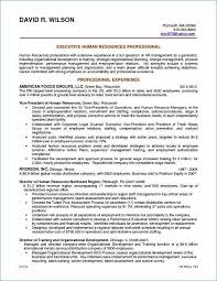 Resume Career Summary Examples Lovely Resume Professional Summary Adorable Resume Professional Summary Examples