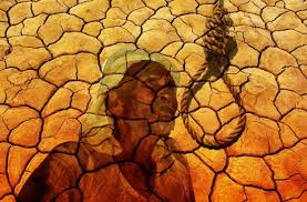 Image result for farmers suicide in india