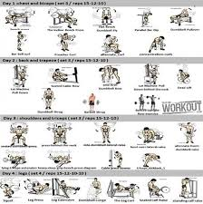 Chest Workout Chart Step By Step Full Body Workout Plan Page 3