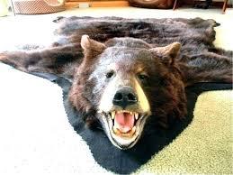 bear skin rug for polar real large image superb