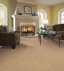 Large Living Room Rugs Living Room Carpet Agreeable The Living Room Carpet Home Design