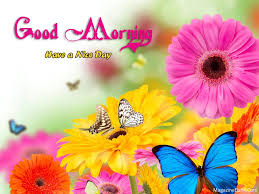 Good Morning Flowers Greetings Beautiful Quotes Pictures Greetings