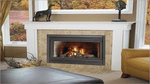 tiny home decorating ideas tiny gas fireplaces small gas for adorable small gas fireplace