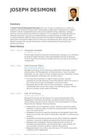 Advantages and disadvantages of using Professional Resume Writing     Curriculum Vitae English Example Pdf Free Cv Template Curriculum Vitae  Template And Cv Example Cv Template English Free Netpress Content Marketing