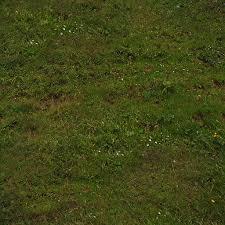seamless dark grass texture. SUNNY DARK CLUMPY GRASS COLOR Seamless Dark Grass Texture B