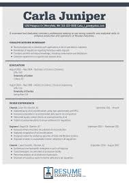 Resume Format Example Newample Examples Template Curriculum Vitae