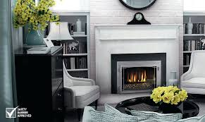 glass for gas fireplace napoleon fireplaces gas fireplace glass doors open or closed